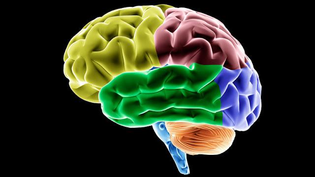 Un científico argentino detrás de un gran avance en la lucha contra el Alzheimer