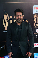 Jr. NTR at IIFA Utsavam Awards 2017 (5).JPG