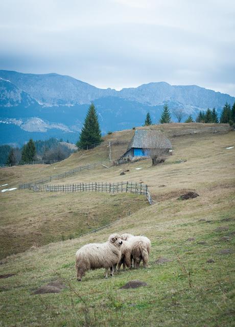 Fundata, Romania