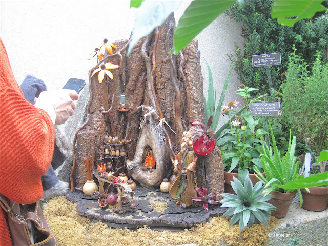 fairy garden, Washington Conservatory