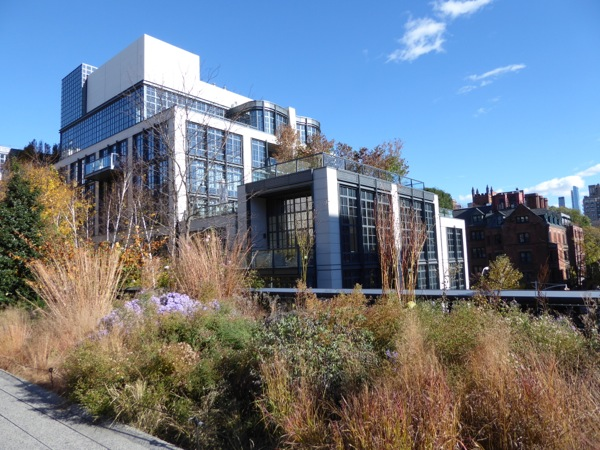 High Line Park view NYC