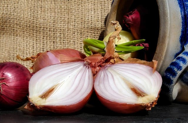 Bawang merah, bumbu dapur yang nutrisinya bermanfaat untuk mempercepat pertumbuhan rambut