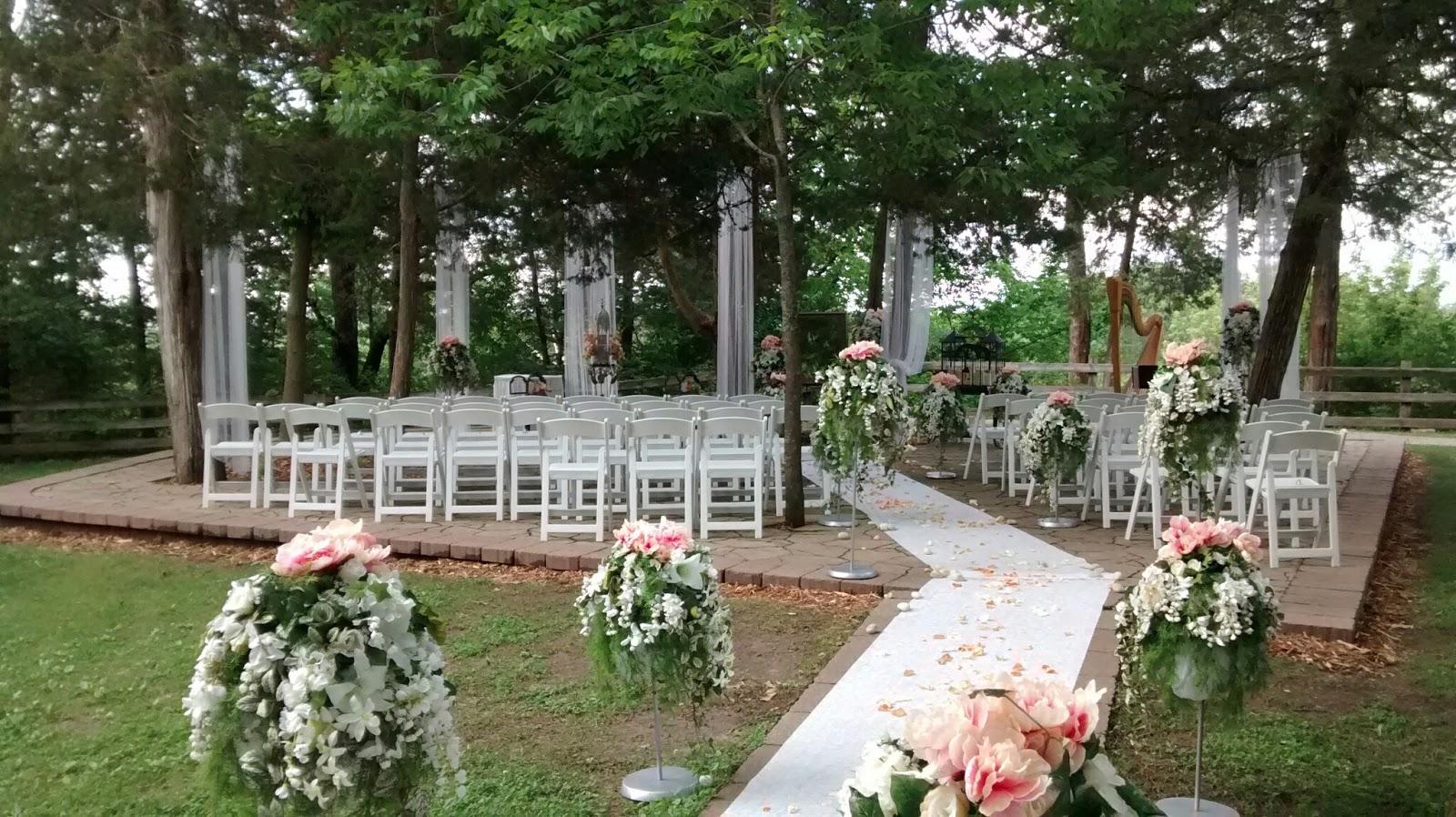 Wedding Ceremony Harpist Starved Rock State Park Utica