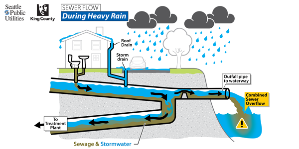 Detroit the region and dirty water for Sewer system diagram