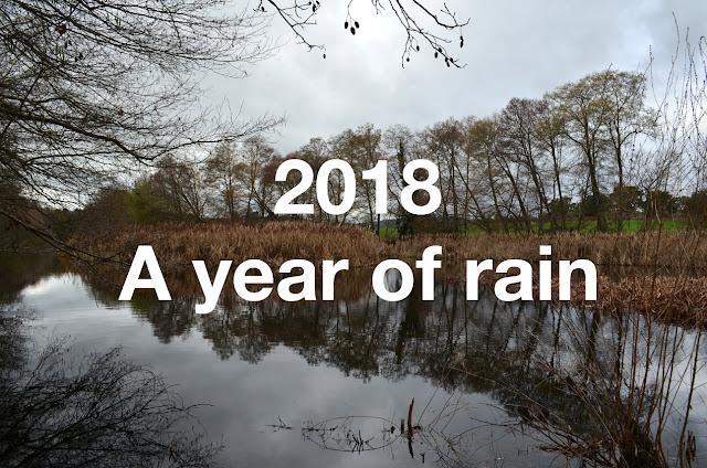 http://www.otchipotchi.com/p/a-year-of-rain.html