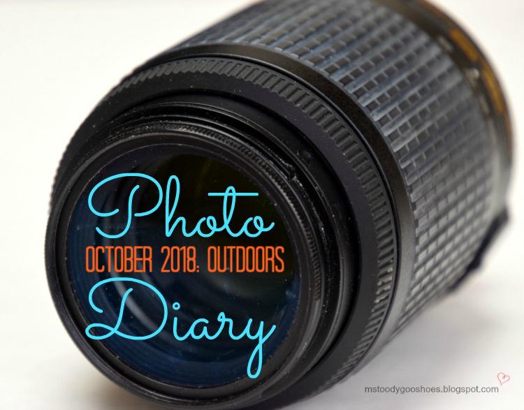 Photo Diary October 2018 | Ms. Toody Goo Shoes
