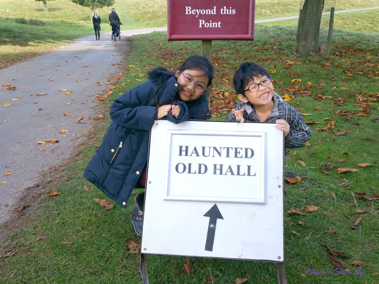Tatton Park, Halloween Half Term Family Day Out, Roald Dahl 100 event
