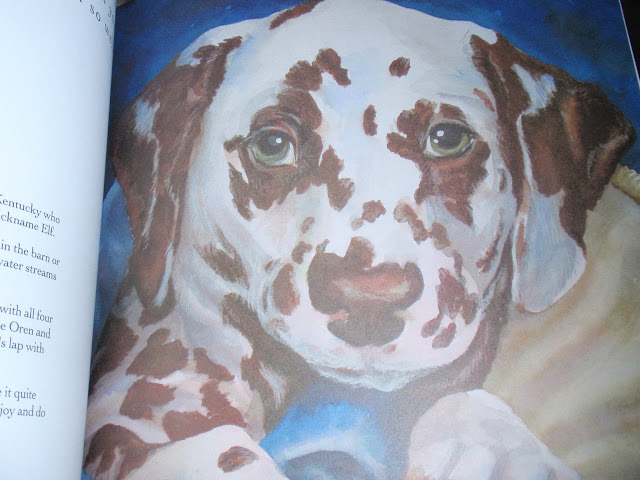 Some of the paintings from the book of Doggitude