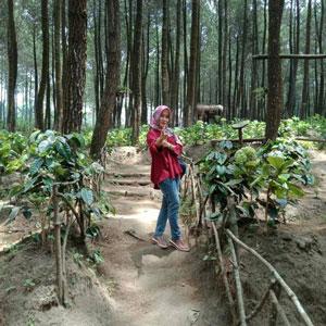 Agustin di Sumbersuko Forest, Wagir, Malang