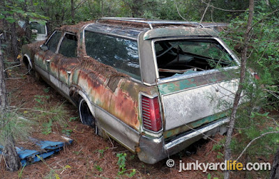The weathered wagon has all it roof glass intact, not so much on the tail gate.