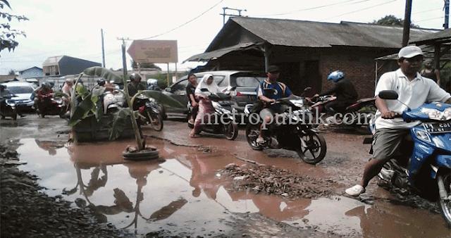 Berjuta Lubang,Warga Desa Belendung Tanam Pohon Pisang di Jalan Raya