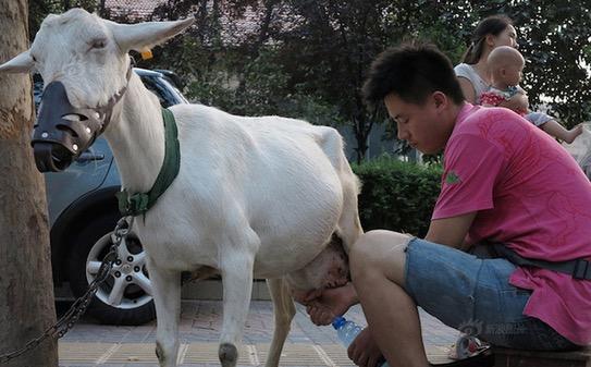 Perniagaan Unik yang Hanya Dapat Dilihat di China