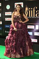 Pragya Jaiswal Sizzles in a Shantanu Nikhil Designed Gown  Exclusive 077.JPG