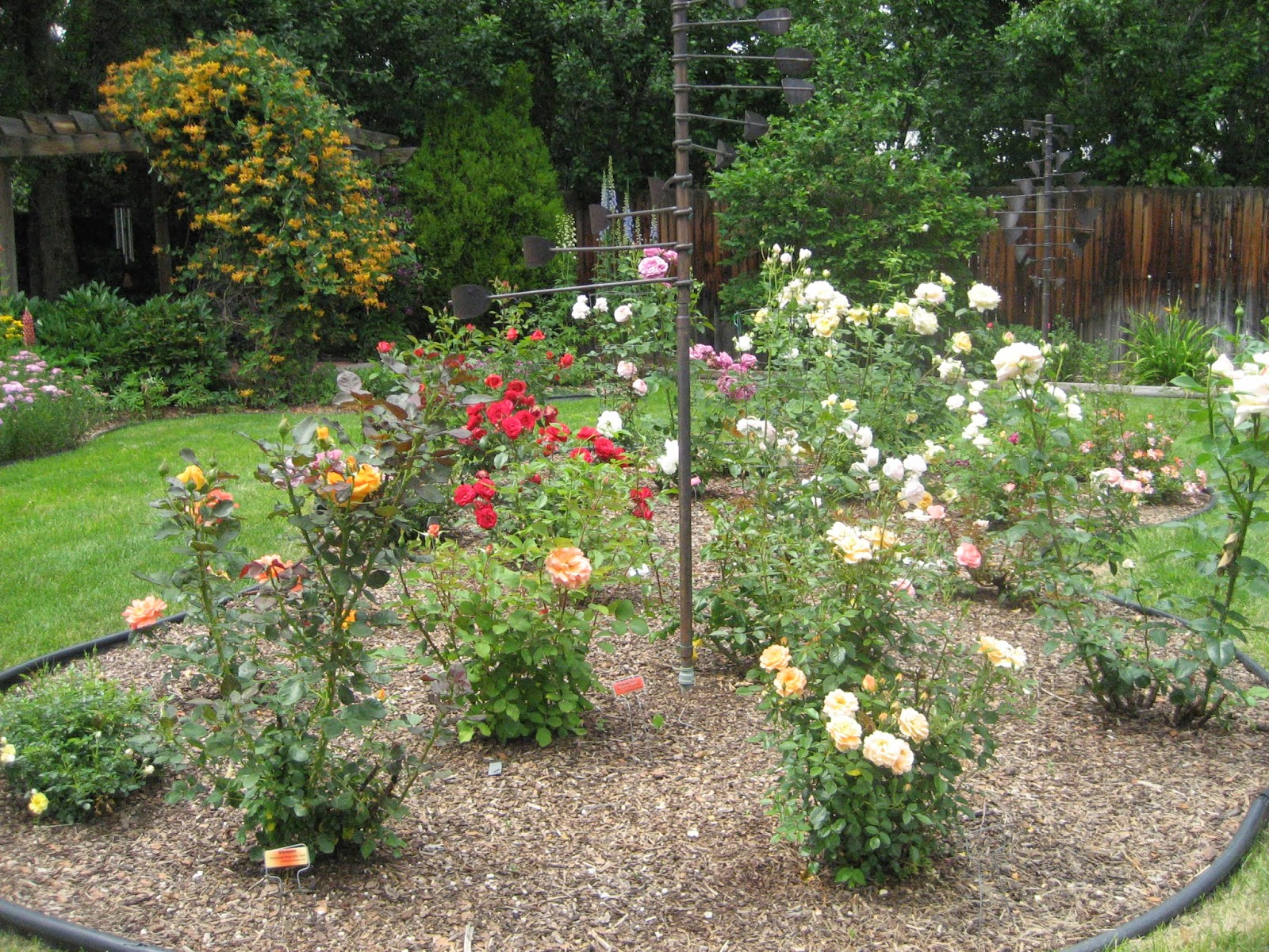 Jeffco Gardener Planning For Spring What Kind Of Mulch