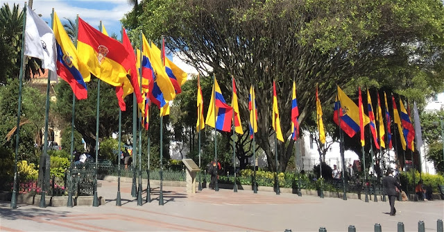 Flags in Parque Calderon
