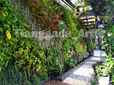 Tukang Taman Surabaya || Desain Taman Surabaya || vertical garden || taman vertical
