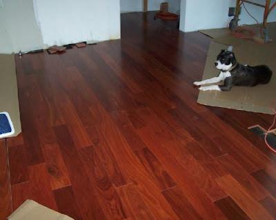 Sàn gỗ giáng hương Lào luôn là sản phẩm dẫn đầu