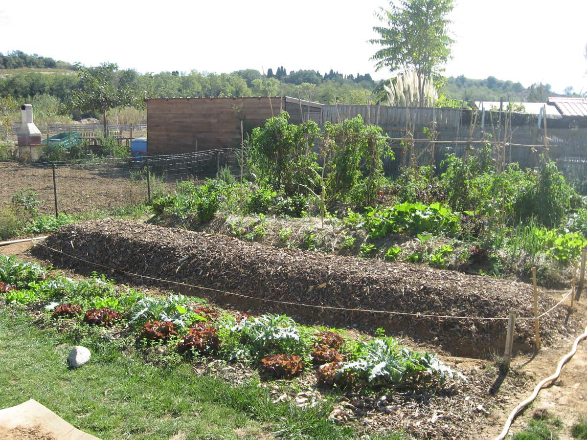 le jardin des g teaux serge mora la permaculture. Black Bedroom Furniture Sets. Home Design Ideas