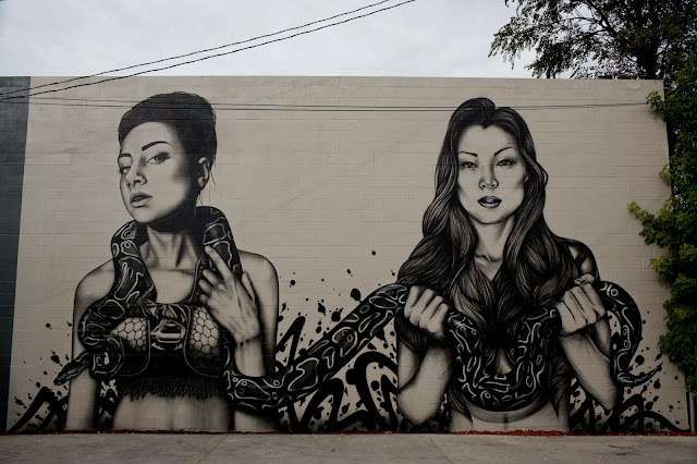 Street Art By Fin DAC and Angelina Christina On The Streets Of Denver, USA. 5
