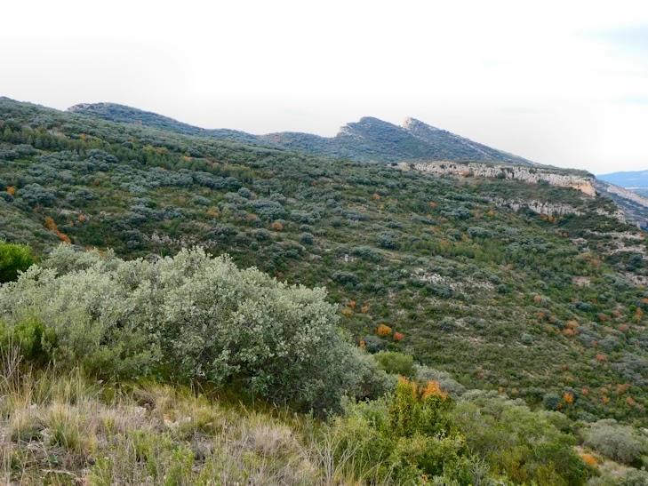 Serra del Mont-roig