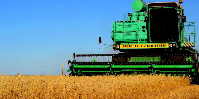 Technological Future of the Agriculture and Food Sector in Russia