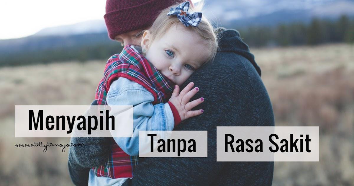 Mommy Diary Menyapih Bayi Tanpa Rasa Sakit Tettytanoyo S Blog
