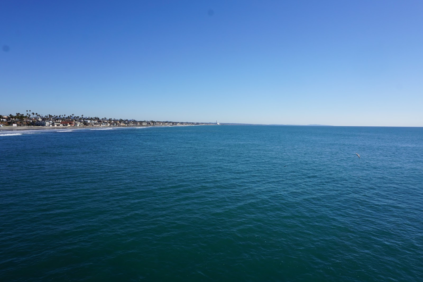 oceanside, california, beach, ocean, carlsbad