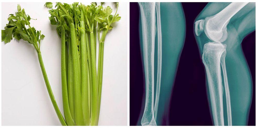 Celery, Bone