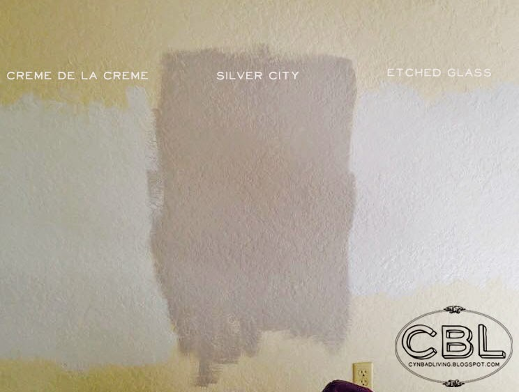 We Decided Early On To Use The Behr Marquee Line Which Offers A One Coat Guarantee At First Tried Color Called Silver City
