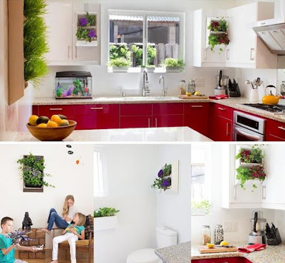 Best Ways To Grow Herbs Indoors - Living Wall Planters