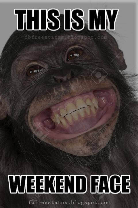 Weekend Funny Pictues, This Is My Weekend Face.