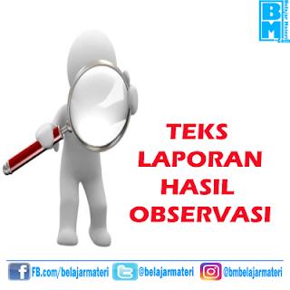 Pengertian Teks Laporan Hasil Observasi (Ciri, Struktur, dan Contoh Teks Laporan Hasil Observasi)