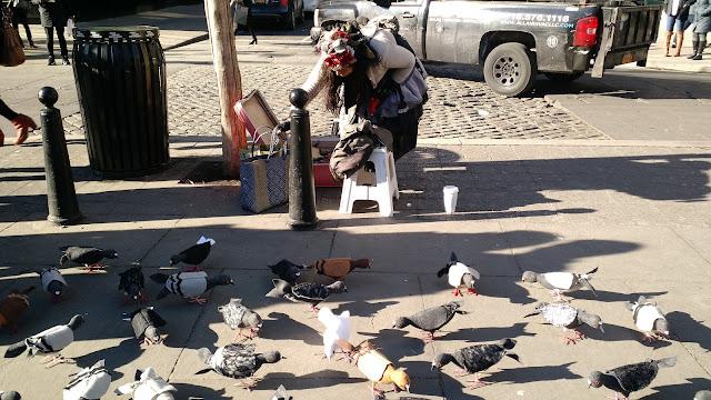 Люди Нью-Йорку: Голубяча Мама (Mother Pigeon, NYC)
