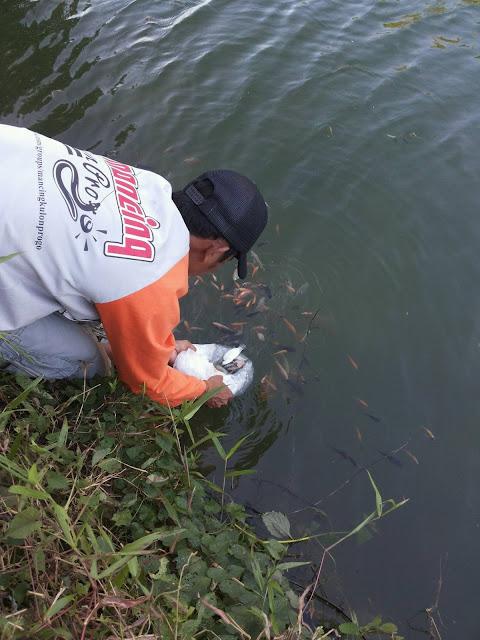 Mari Tebar Benih Ikan  . jaga kelestarian ekosistem disungai