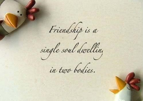 Friendship Day Quotes, Messages, Sms for Facebook Status in Hindi English