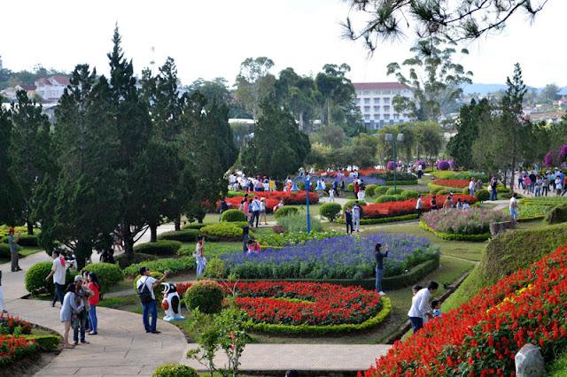 Vườn hoa rực rỡ sắc màu tại Đà Lạt