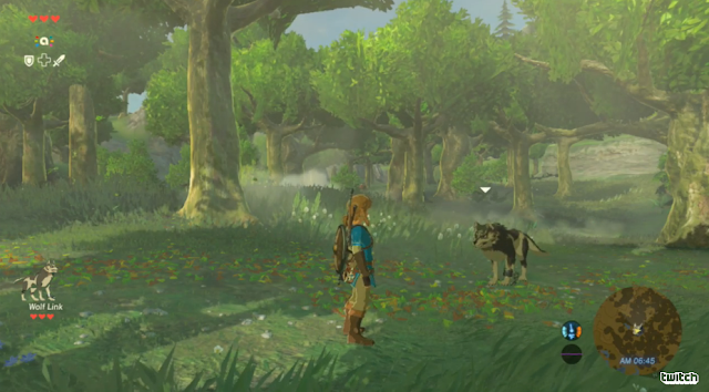 The Legend of Zelda: Breath of the Wild Wolf Link partner