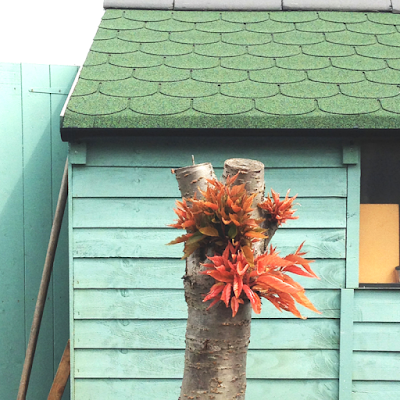 Turquoise and green shed paint