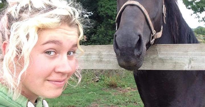 Horses, Hormones and Headaches.