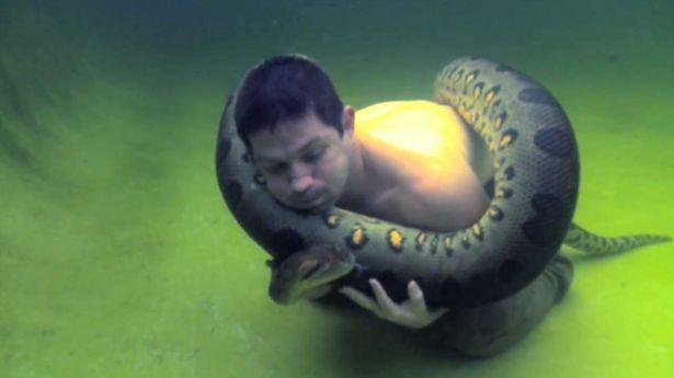 Wieand-Swim-Anaconda-2