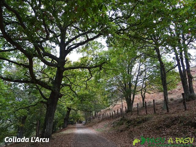 Collada L'Arcu camino a la Xamoca, Sobrescobio
