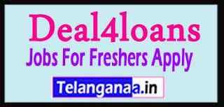 Deal4loans Recruitment Jobs For Freshers Apply