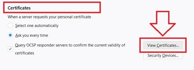 View Certificates, Sertifikat Elektronik Pajak