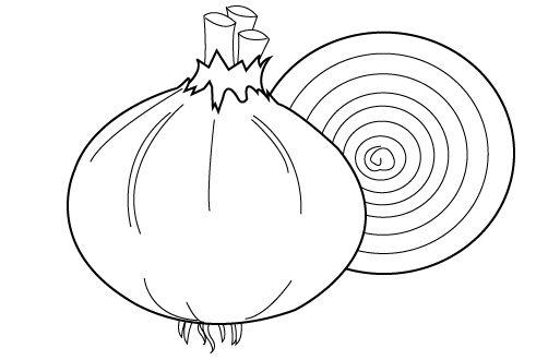 Dibujos De Cebollas Para Colorear: RECURSOS Y ACTIVIDADES PARA