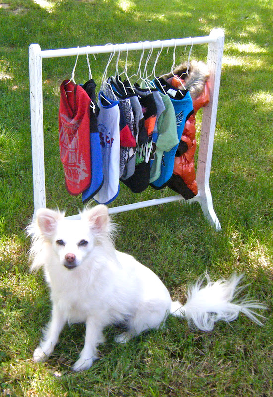 Sew Doggystyle Diy Clothes Rack