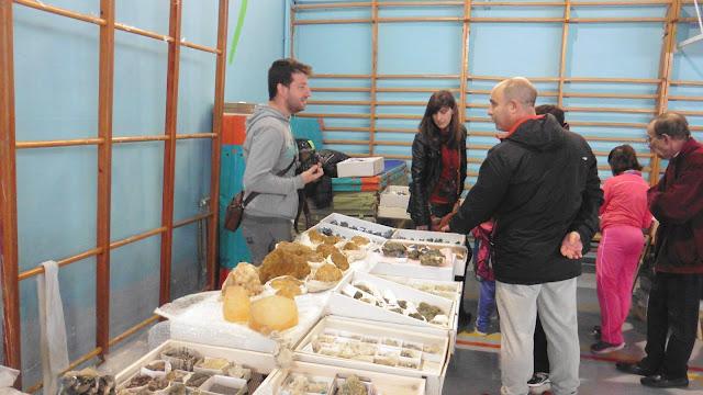 I Mesa de minerales ciudad de Jaén - Página 2 P1050014