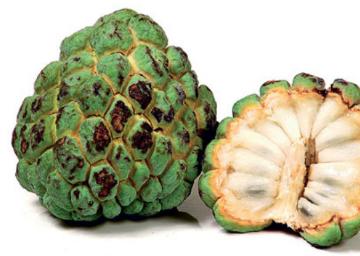 Como fazer SORVETE DE Fruta do conde ou pinha