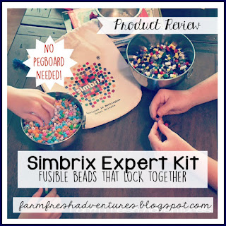 Simbrix Expert Set {A Timberdoodle Product Review}