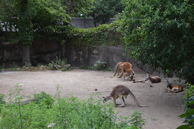 Lincoln Park Zoo, Chicago