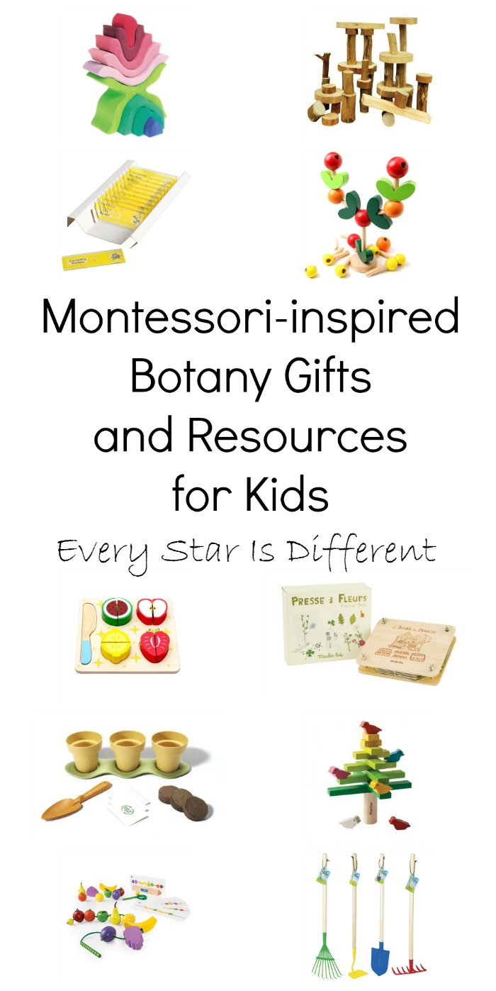 Montessori Inspired Botany Gifts And Resources For Kids